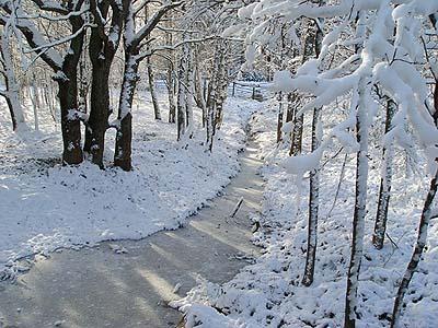 Новый год и зимние каникулы 2012 в крым